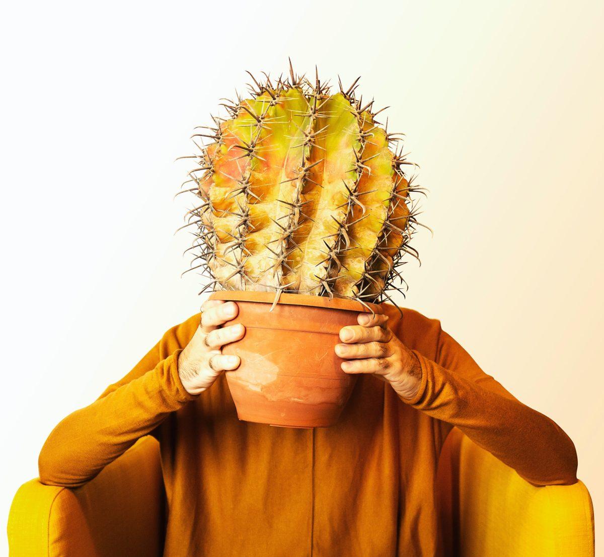Eine Person sitzt alleine in einem Sessel und hält sich einen Topf in dem ein großer Kaktus ist, vor den Kopf. Das Bild soll Corona-Skeptiker symbolisieren, die trotz Lockdown in Deutschland weiter Proteste gegen die Maßnahmen zum Schutz der Bevölkerung während der Pandemie durchführen.